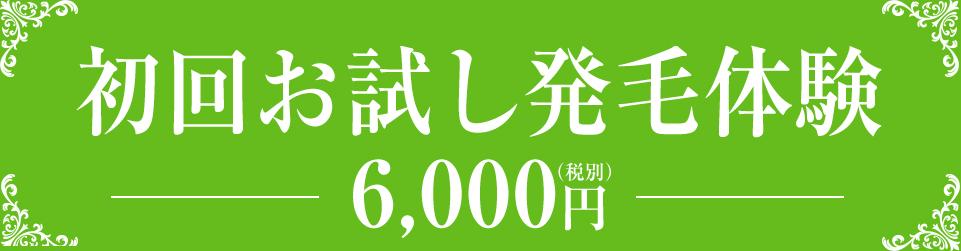 初回お試し発毛体験 6,000円(税別)